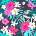 Vector seamless tropical pattern, vivid tropic foliage, with monstera leaf, palm leaves, plumeria flowers, hibiscus in bloom. Mode