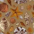 Vector seamless vintage pattern with colorful seashells on a sandy brown background Royalty Free Stock Image
