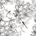 Vector seamless wallpaper pattern with flowers in monochromic co vintage butterfly and for design Stock Photo