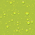 Vector. Seamless water drop texture Royalty Free Stock Photo