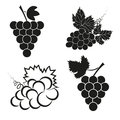 Vector set of abstract grapes black icons.