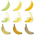 Vector set bananas