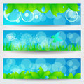 Vector set beautiful green spring nature banners leaves grass dandelion butterfly illustration Royalty Free Stock Photo