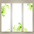 Beautiful floral banner set Royalty Free Stock Photo