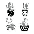 Vector set with black and white cactuses and succulents in pots.