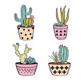 Vector set with cactuses and succulents in pots
