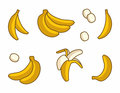 Vector Set of Cartoon Yellow Bananas on white background