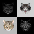 Vector set cats low poly design. Triangle cat icon illustration for tattoo, coloring, wallpaper and printing on t-shirts
