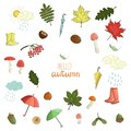 Vector set of colored autumn elements