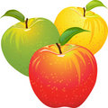 Vector Set of colorful apples Royalty Free Stock Photo