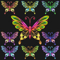 Vector set colorful butterflies Stock Photography