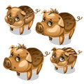 Vector set of cute pigs with brown eyes