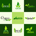 Vector set of design elements of the logo - a healthy diet, detox, organic and natural products Royalty Free Stock Photo