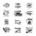 Vector set of Dessert Spices logos, labels, badges