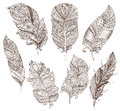 Vector set of doodle feathers on white background