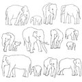 Vector set of elephants