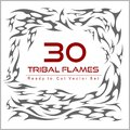 Vector set of flame elements Royalty Free Stock Photo