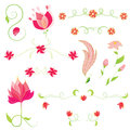 Vector set of flowers. Floral elements Royalty Free Stock Image