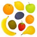 Vector set of fresh fruit. Design template of food ingredients.