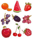 Vector set with fruits and berries: red, purple and orange Royalty Free Stock Photo
