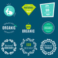 Vector Set of green labels and badges with leaves for organic, natural, bio and eco friendly products, isolated on dark
