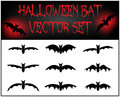 Vector set of halloween bat silhouette illustration on white background Royalty Free Stock Photo