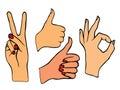 Vector set of hands.