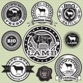 Vector set of labels sheep and lamb with Stock Photo