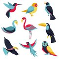 Vector set of logo design elements birds signs and symbols humming bird pigeon toucan swan flamingo parrot eagle owl Stock Images