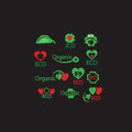 Vector set of organic, Eco, green leaf, natural, biology, heart, wellness symbols for web design with place for editable text