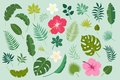 Vector set with palm leaves and flowers