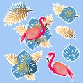 Vector set with pink flamingo and tropical leaves
