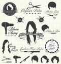 Vektor sada vlasy etikety a ikony