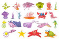 Vector set of seaweed and sea animals illustration