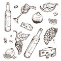 Vector set of sketches beverage and food on a white background. Wine bottle, wineglass, fruit, piece, the branches the