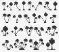 Vector set of solar palm beach Royalty Free Stock Photo