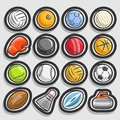 Vector set of Sports Balls Royalty Free Stock Photo