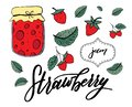 Vector set of strawberries, leafs and jam jar, iso;ated on white backgroung