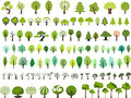 Vector set of trees with different stlye Royalty Free Stock Photo