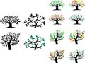 Vector set of trees with seasons Royalty Free Stock Photo