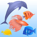 Vector set of tropical fish, dolphins and fish-rooster Royalty Free Stock Photo