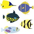 Vector set tropical fish isolated white Royalty Free Stock Photo