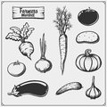 Vector set of vegetables isolated on white background. Farmers market icons. Royalty Free Stock Photo