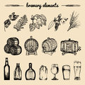 Vector set of vintage brewery hand sketched elements,barrel, bottle,glass,herbs and plants. Retro beer icons collection.
