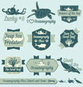 Vector Set: Vintage Oceanography Class Labels Royalty Free Stock Photography