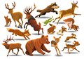 Vector set of wild forest animals like stag, bear, wolf, fox, running Royalty Free Stock Photo