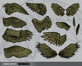 Vector set of  Wings Royalty Free Stock Photography