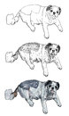 The vector of shihtzu fat is layin down Royalty Free Stock Images