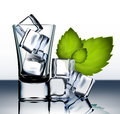 Vector shotglass with ice and mint Royalty Free Stock Photo