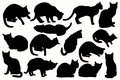 Vector silhouettes of cats in different positions.